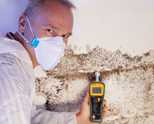 Texas Mold Remediation